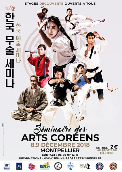 affiche seminaire arts coreens 9 dec 2018 - arts martiaux coreens