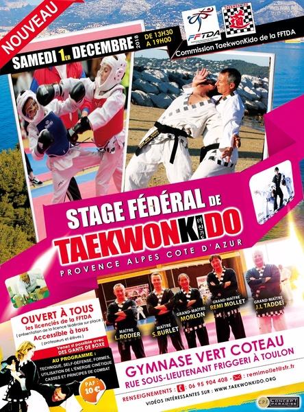 stage taekwonkido toulon 1 12 2018