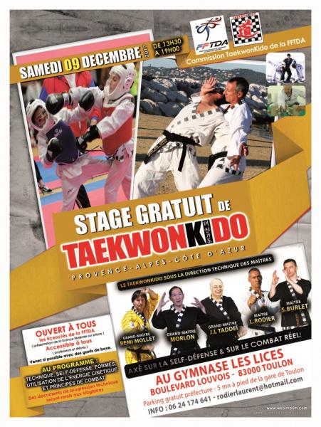 stage taekwonkido toulon 9 12 2017
